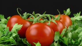 Salsa e tomate filme