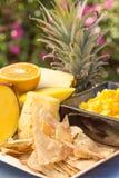 Salsa för tropisk frukt Royaltyfria Bilder