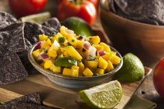 Salsa fait maison frais de mangue image libre de droits