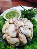 Salsa fresca di frutti di mare e dell'ostrica Immagine Stock Libera da Diritti
