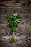 Salsa fresca no fundo de madeira Imagens de Stock Royalty Free