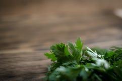 Salsa fresca no fundo de madeira Foto de Stock Royalty Free