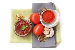 Salsa georgiana con los tomates y las nueces Imagenes de archivo