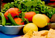 Salsa ingredients royalty free stock image