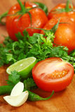 Salsa Ingredients of Avocado, Cilantro, Tomatoes and Peppers Royalty Free Stock Photography