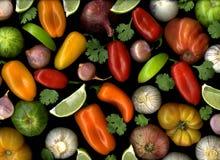 Salsa Ingredients on Black Royalty Free Stock Photo