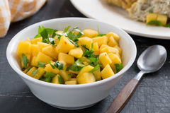 Salsa with mango, coriander and curry paste, close-up. Horizontal stock photography