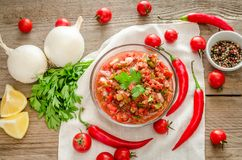 Salsa mexicana de la salsa con los ingredientes Imágenes de archivo libres de regalías