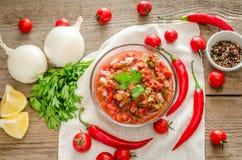 Salsa mexicana do molho com ingredientes Imagens de Stock Royalty Free