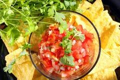 Salsa Mexikanerpico de Gallo mit Nachos und Koriander stockbilder