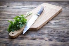 Salsa orgânica fresca com a faca na placa de corte de madeira Imagens de Stock