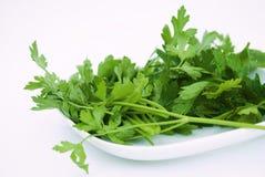 Salsa orgânica verde fotos de stock