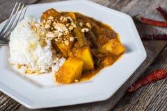 Salsa organica della spezia del curry saporita Fotografie Stock Libere da Diritti