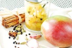 Salsa picante del mango Fotos de archivo libres de regalías