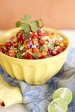 Salsa mexicain Image libre de droits