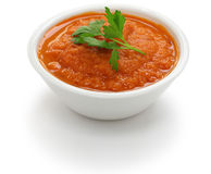 Salsa roja dip Royalty Free Stock Photos