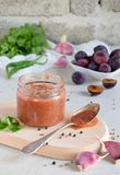 Salsa saporita dalle prugne, dall'aglio, dal coriandolo, dall'aneto e dal peperoncino rossi Tkemali georgiano su fondo bianco Aut immagine stock libera da diritti