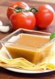 Salsa sauce Stock Images