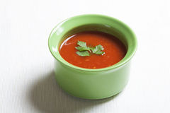 Salsa sauce Royalty Free Stock Image