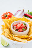 Salsa sauce and nachos Royalty Free Stock Photography