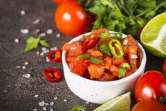 Salsa sauce. Traditional Latin American mexican salsa sauce and ingredients. Close up royalty free stock photography