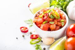 Salsa sauce on white. Salsa sauce and ingredients on white table royalty free stock photography