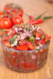 Salsa with Tomatoes, Onions, and Cilantro Royalty Free Stock Photo