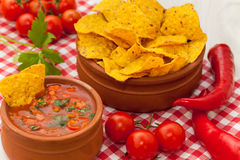 Salsa with tortilla chips and glass of beer Royalty Free Stock Photography