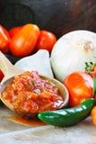 Salsa und Bestandteile Lizenzfreies Stockbild