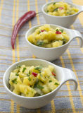 Salsa van de mango Stock Afbeeldingen