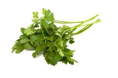 Salsa verde Imagens de Stock Royalty Free