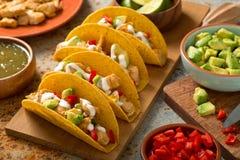 Salsa Verde de Tacos de poulet photos libres de droits