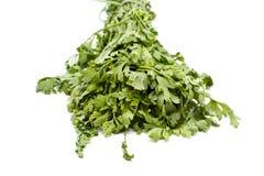 Salsa verde fresca fotos de stock royalty free