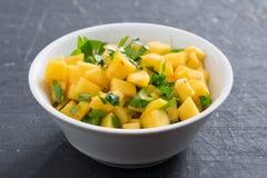 Salsa z mango, kolenderów i curry'ego pastą, Zdjęcia Stock