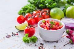 Salsasås och ingredienser royaltyfria bilder