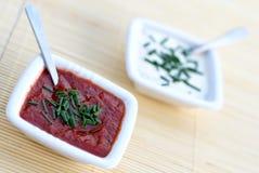 Salsas del tomate y de ajo Foto de archivo libre de regalías