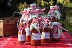 Salsas hechas en casa Imagen de archivo libre de regalías