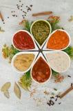 Salse fresche saporite sotto forma del fiore Cucinando dagli ingredienti naturali Fotografia Stock