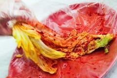 Salse piccanti mescolantesi e Kimchi Immagine Stock