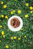 Salsiccia arrostita in una ciotola bianca Immagine Stock