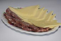 Salsiccia e formaggio di estate con i cracker immagine stock