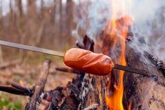 Salsiccia rossa al forno su fuoco immagine stock libera da diritti