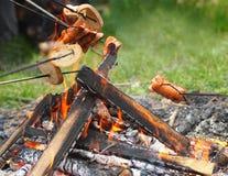 Salsiccie di cottura sul fuoco di accampamento Immagini Stock