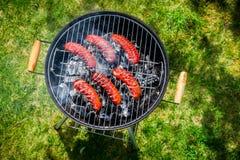 Salsiccie piccanti con i rosmarini su una griglia Fotografie Stock Libere da Diritti