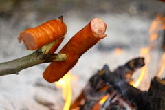 Salsiccie sopra il fuoco Fotografia Stock
