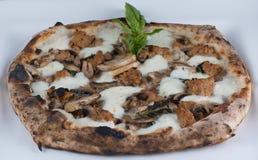 Salsicha e pizza ateadas fogo madeira dos cogumelos Imagens de Stock