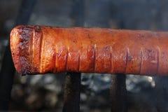 Salsicha polonesa grelhada Imagem de Stock Royalty Free