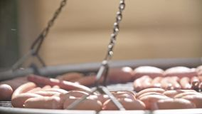 Salsichas de carne de porco grelhadas deliciosas filme