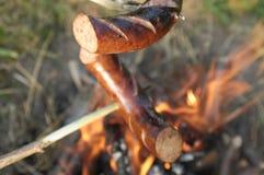 Salsichas na fogueira imagens de stock