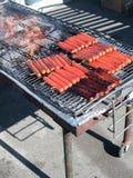Salsichas no assado imagem de stock
